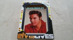 Pubspiegel Elvis