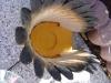 Indianer Kopfschmuck